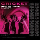 CRICKET APPOINTMENT BOOK 4COLUMN