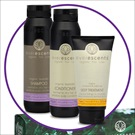 <b>EVERESCENTS</b> GIFT PACK 3P LAVENDER