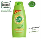 ERBA VIVA SHAMPOO DRY/DAMAGED 500ML